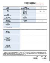 画像のようなオーディションの願書を書くときは英語か韓国語の方が良いのですか? 記入するときは、手書きでも良いのですか?