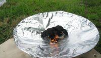 コールマンの焚き火台「ファイヤーディスク」ですが、新品時の表面の状態を維持させる方法とかってあるのでしょうか?