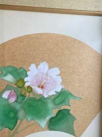 この絵の花はなんという植物を描いたものでしょうか。