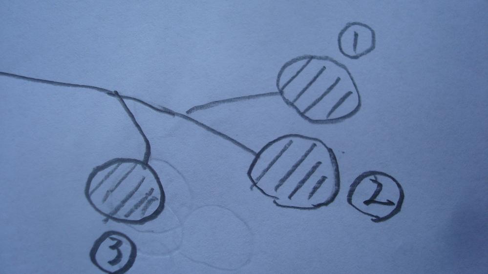 柿の摘果についての質問です。写真のような場合において、どれを摘果すればよいのか教えてください。(尚、大きさは三個とも同じぐらいです)