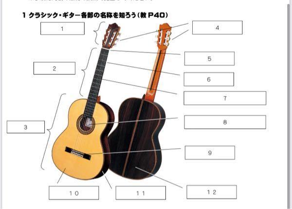 クラシック・ギターという楽器で、写真にある 10、11、12の解答を知ってる方いませんか 教科書にも載ってませんでした! ネットで調べて回答でも全然嬉しいです! お願いします