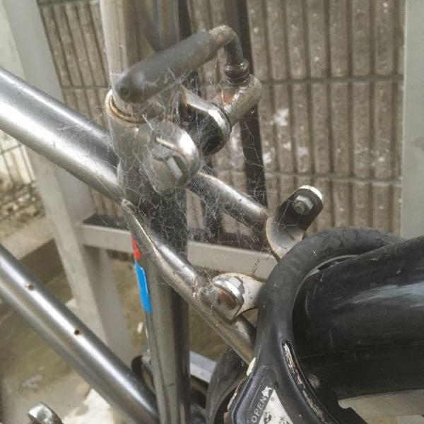 クモの巣防止について。 自転車に写真のようなクモの巣が張り、 取っても取っても翌日には写真のような状態です。 防ぐ良い方法をご存知の方は、 ご教示いただきたいと思います。