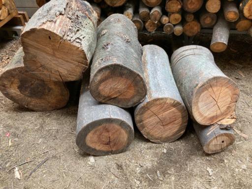 こんにちは。 薪ストーブをやっておりますが、 こちらの樹種分かる方教えていただけないでしょうか? 薪として使えるのかどうか知りたいです。
