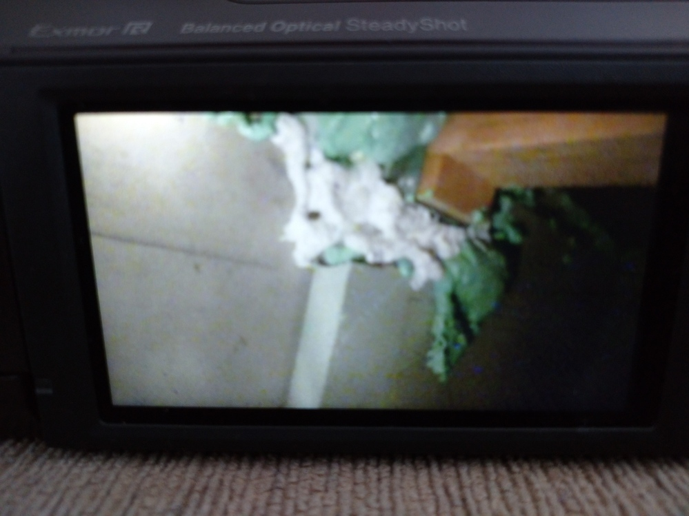家の床下に潜ってみたのですが、白色と緑色の物体は何でしょうか? 見えにくくてすみません。