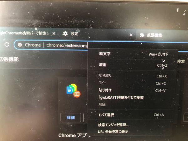 Google chromeのURLバーで検索しようとすると写真のようにマウスの右クリックをしたときに出てくるようなやつが表示されて、検索できません。 どうしたらいいでしょうか?