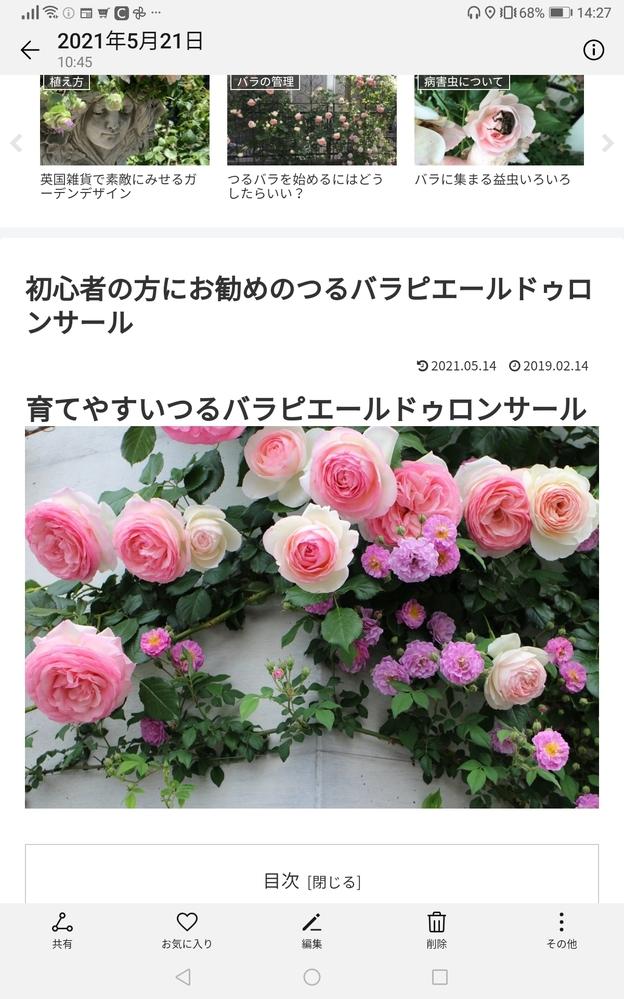 下にある八重のような薔薇は何と言う名前の薔薇ですか?ご存知の方がおられましたら教えて下さい。よろしくお願いします。