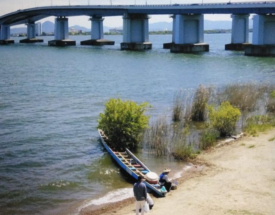 友人が撮影した添付写真について教えて下さい。 写真は滋賀県の琵琶湖大橋の近くで撮影されたものですが、 この船で行われていると思われる作業内容についてご存じの方は教えて下さい。