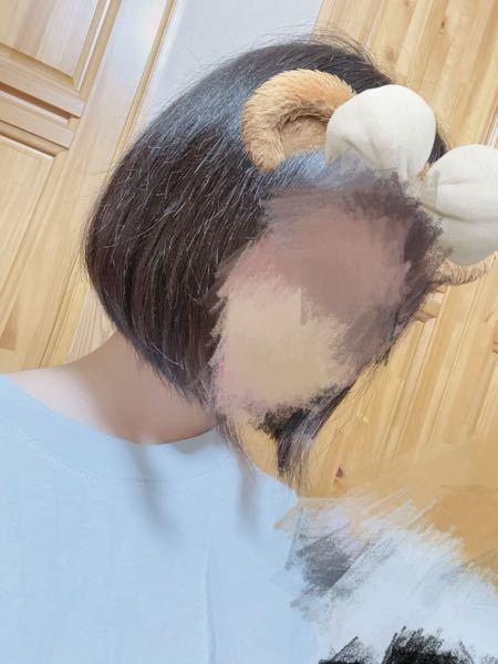 今日美容院でこの写真より長めの髪型をみせて、完成をみたら写真よりも短くなってました。 これくらいのボブは自分の顔にも全然合ってないから全然気に入らなくて後悔してます この髪型のいい所とか合うメイクとか服沢山教えて欲しいです あと髪の毛が早く伸びる方法とかも教えて貰えたら助かります(。>﹏<。)