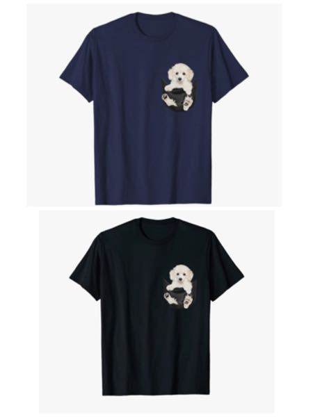 即ベストアンサーします。 お礼250枚。 画像のTシャツが欲しいのですが、どちらの色がいいでしょうか?