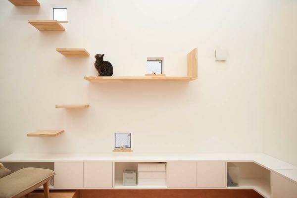 これから建てる新築戸建てについてです。 猫を飼っています。 キャットウォークを家につけたいのですが、これはホームメーカーや工務店の方につけてくださいと伝えてもいいのでしょうか? 断られることもあ...