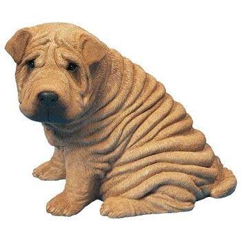 犬が好きです。初めて見た時から思っていました。「習近平は、シャー・ペイに似ている」と。私だけでしょうか?