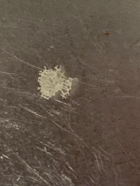 水筒の蓋の裏に付着していた、この透明な結晶のような物質は何でしょうか?