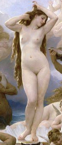 162センチ女です。体型がこの写真そのまんまなんですけどこれはストレートの何になりますか??