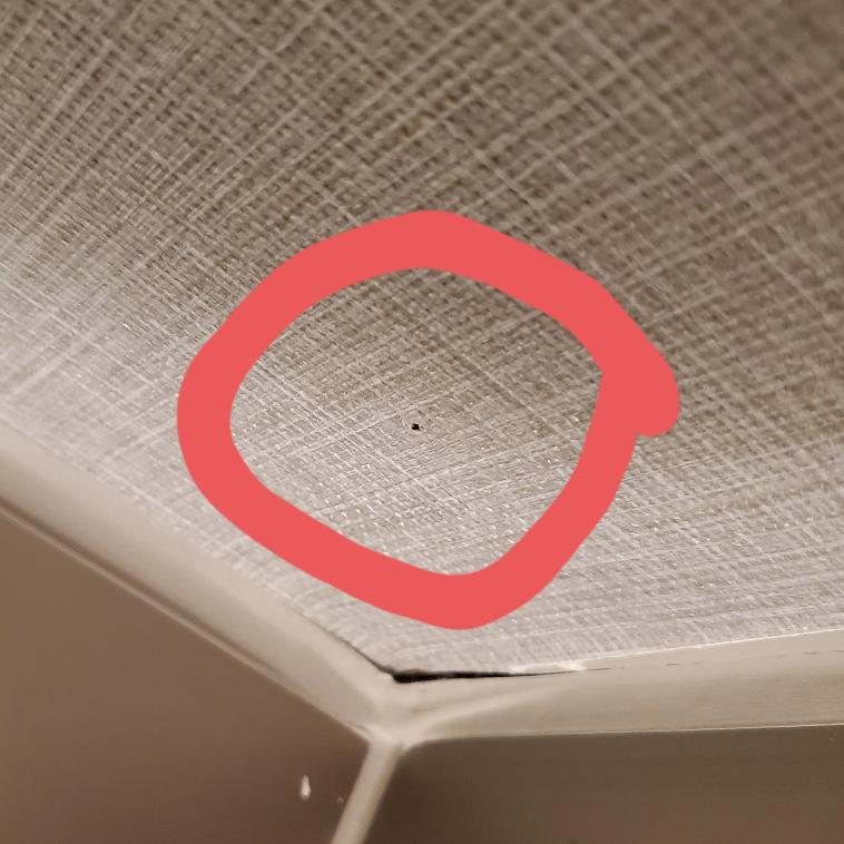 ネジ穴の修繕について。 ポチッとネジ穴が開いています。これを修繕したいのですが、かなり小さく目立たない穴のため、このまま押し込む形で元に戻せそうに見えてアドバイス欲しいです。 通常のやり方ですと、壁紙を切り取って、キレイな壁紙をこの部分に張り替える、という方法のようですが、そこまでしなくても、穴の周りの壁紙を寄せてボンドで壁紙を留めれば、 穴が塞げそうに見えます。 使うと良い道具(目止めなど?)とか やり方のサイトとかご存じの方がいましたら よろしくお願い申し上げます。