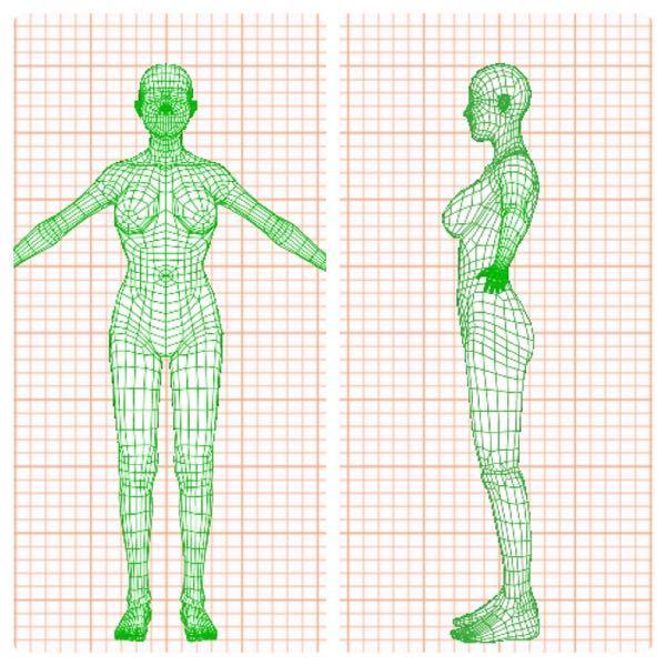 男性に質問です。 148.5cm/37kg/fat.19.5% T92・U64・W58・M84.5・H89 は、女性らしいと思いますか? おしりに肉はあまりついていなく、HカップはあってもH65の場合アンダーが細い影響で女性から見てF~G、男性から見てD~Eにしか見えないそうです。 実際にHカップなのは置いといて、見た目が大体男性の想像するD~Eカップだと思って答えて下さい! お尻もよく男性は勘違いするらしいですが…下着のパンツはMサイズを履いてます!でもTバックはSサイズにしてます。 垂れてはいないですが、横から見てヒップは平ったいです。 アンダーとウエストの差は6cm程度ですが、ミドルヒップとウエストの差は26.5cmくらいあるので、腰にかけてまでの括れはあると思います。(鏡で見てもそんな感じです)