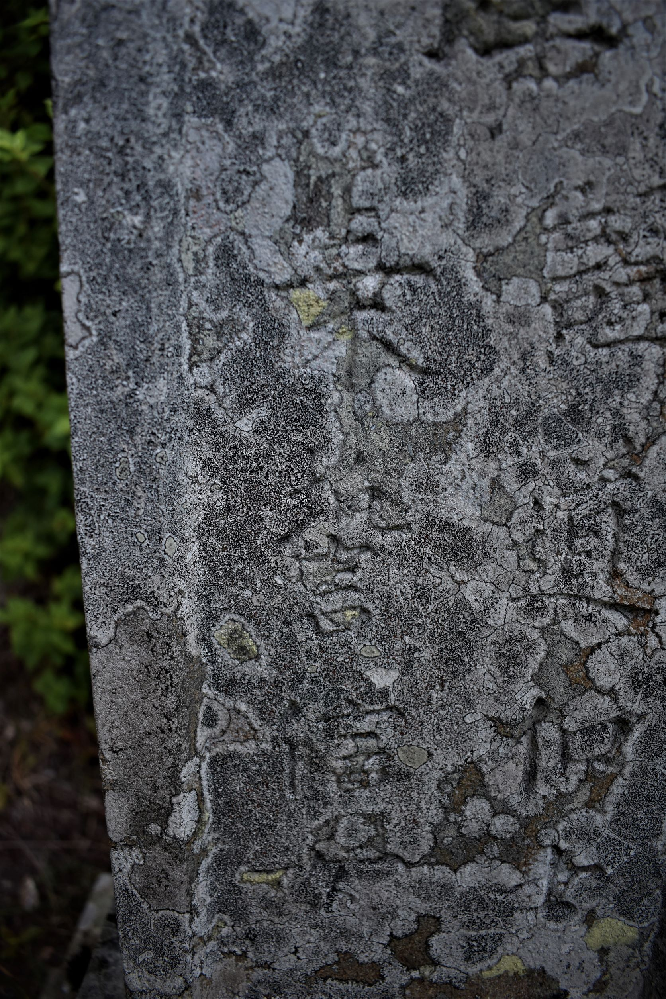 この漢字、 なんと読むのでしょうか?