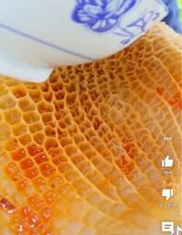 ティックトックやYouTubeで海外の方が食べている この網目のような食べ物は一体何なのでしょう?