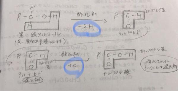 有機化学です。 Oを加えて酸化するときは、なぜOは1つだけで良いのかがわかりません。 Hを手放して酸化するときにはH2なのに、、 O2じゃなくて良いのでしょうか?