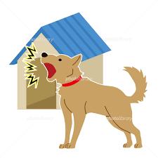 隣によく鳴くウルサイミニチュアダックスフンドが居るのですが、吠えても吠えても飼い主は一切止めないので、1時間くらいずっと吠えています。 自衛策として、ネットで拾った「ピーーーーーーーーー」と言う音をならそうと思っています。 人間でもわずかに聞こえる音量です。 これは罪になりますか? 貴方様ならどんな対策を撮りますか?