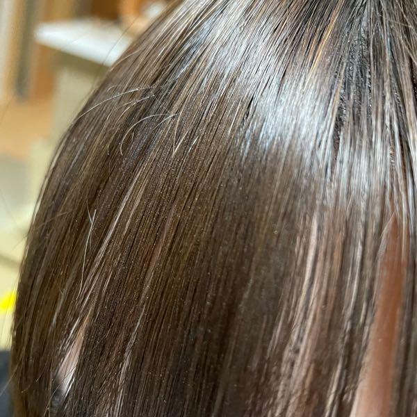 前髪にちょんちょんと飛び出てる短い毛が気になります。抜くのは良くないですか? 画像ではわかりにくいですが少し浮いてるような短い毛があるんです。細い毛なので抜いてもいいのかなーと思ってるのですが… 帰ってからスタイリング剤がついてたのを櫛でとかしたので白い粉がついてます、汚くて申し訳ありません。