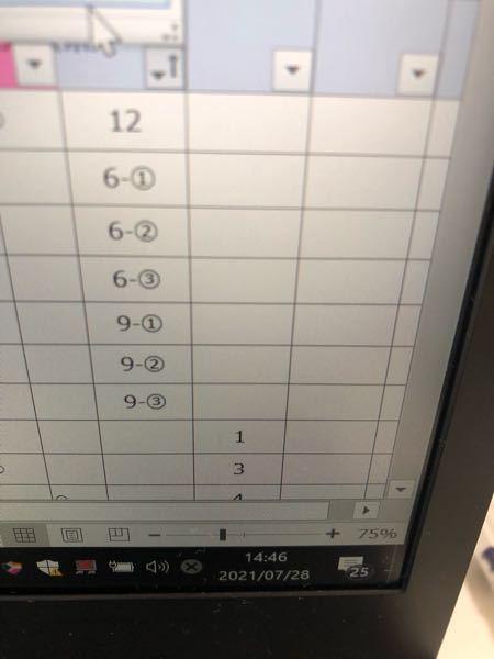 エクセルで1〜12をフィルターで並び替えて 6-①、6-②、9-①、9-②とかまるがついたやつが12の後ろに来ますが、以後まるがついた中で数字順になるんですか? 多分文字列とかなんかの関係ですよね