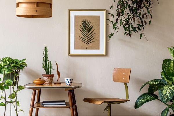 インテリアになる観葉植物マイベスト5を教えてください。 観葉植物 インテリアグリーン オシャレ