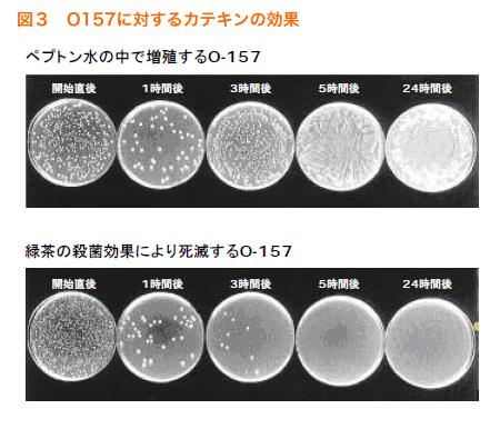 写真のように菌の発育抑制作用のあるものをを培地に接種して時間経過での変化を調べたいのですが、どのようにやれば良いですか?
