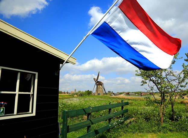 オランダの食べ物と聞いて、思い浮かぶものは何ですか?