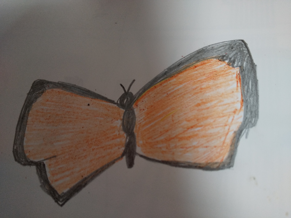 蝶について詳しい方がいらっしゃればお願いします。 愛知県の名古屋市周辺在住です。このへんではあまり見かけたことのない蝶が飛んでいました。 写真を撮ろうとしましたが、うまく撮れなかったので、とりあえず絵を描いてみました。動いているところだけしか見られなかった上に、二度しか見ていないので下手な上にうろ覚えですが…。 大きさはアゲハチョウより少し小さく、四角っぽい羽の形で、黒いふちどりのある鮮やかなオレンジの羽です。なにかに止まっているわけでもなく空を飛んでいただけなので、止まっているときの形などはわかりません。 情報が少なくてすみませんがわかる方がいればお願いします。
