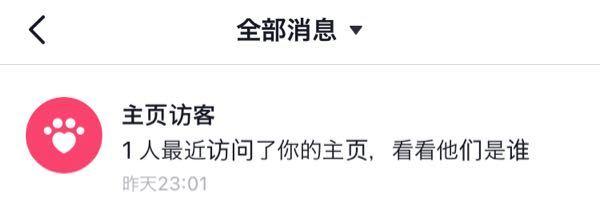 中国人のTikTok (抖音)で主页访客と出てきたのですがこれはなんですか?
