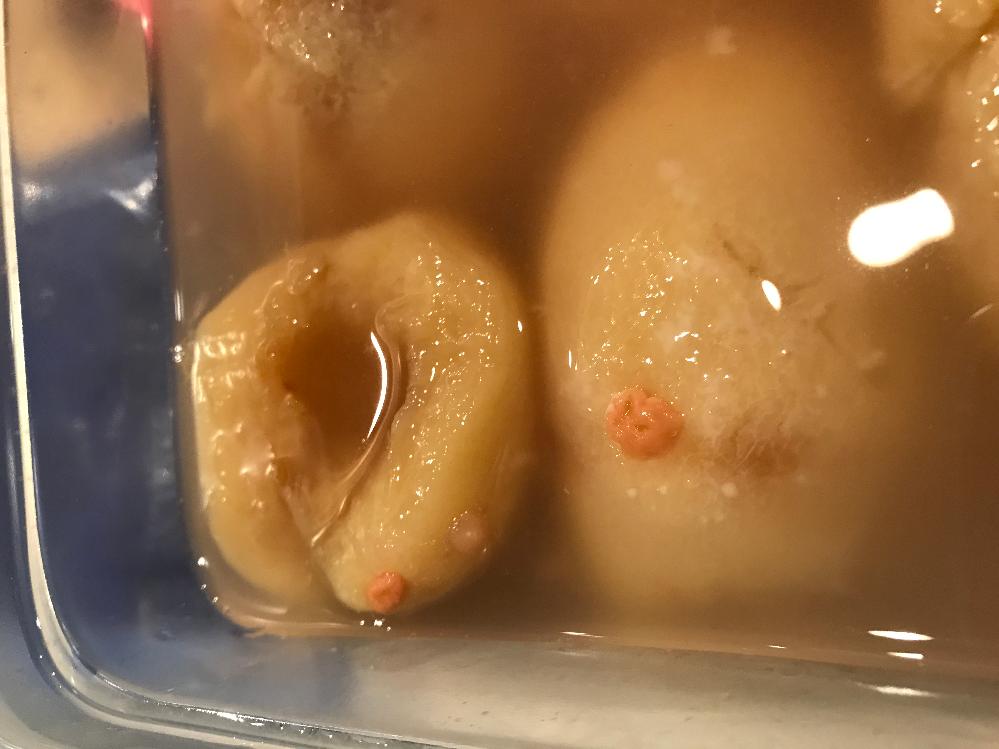 桃のコンポートにオレンジのカビ?のようなものが出来ていました。(画像あり) 触ってみると少し硬い塊のようになっているのですが、これはカビでしょうか? コンポートを作ったのは1ヶ月くらい前です。 液に浸して、タッパーで冷蔵保存をしていました。 オレンジのカビのようなものが出来ていたのは、液から出ていた部分のみです。 液の中に沈んでいた桃を食べましたが、すこし舌がピリピリする(炭酸?発酵?)くらいで美味しく食べれました。 オレンジのシコリ?カビ?が一体なんなのか正体が気になります。 ひととおりネット検索してみましたが、どこにも情報がなく、こちらに投稿させていただきました。 詳しい方、ご教示いただけますと幸いです。 よろしくお願いします。