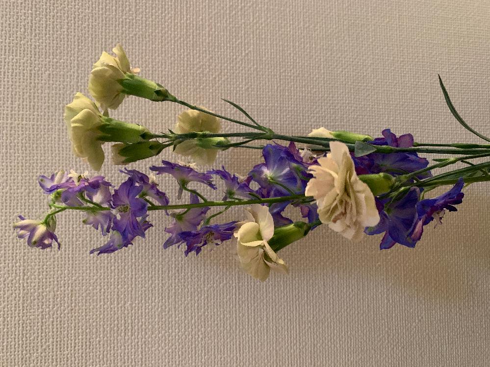 お花の種類についてです。 今日お花を買ったのですが、名前をどうしても思い出せず、ネットで調べても見つけられませんでした。 写真の紫のお花と白のお花はなんという名前でしょうか?花言葉も一緒に教えて下さるとありがたいです。 ちなみに白のお花は、カーネーションの種類だったと思います。