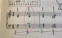 1か月のピアノ初心者です。 バーナムピアノテクニック1という教本を使って練習しているのですが、画像のような和音(赤で囲った部分)が登場しました。 なんとなくこれまでは、白鍵を弾く場合、指は黒鍵より手前の部分を抑えるものだと勝手に思っていたのですが、それだとこのコードを弾くには指をアクロバットのように折り曲げる必要があります。 そうではなく、このような場合には、黒鍵と黒鍵の間の狭い白い部分にま...
