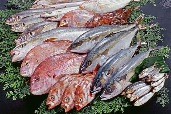 白身魚フライとよく聞きますが、 あなたは何の魚のフライが好きですか? 私はサワラフライ、アジフライ、