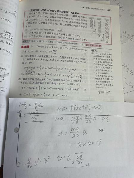 この問題の(2)で、以下のように考えたのですが、答えが合いません、、 どこが違うか分かる方、教えて下さい ♀️ 画像見づらくてすみません、答えはa√g/x₀です。