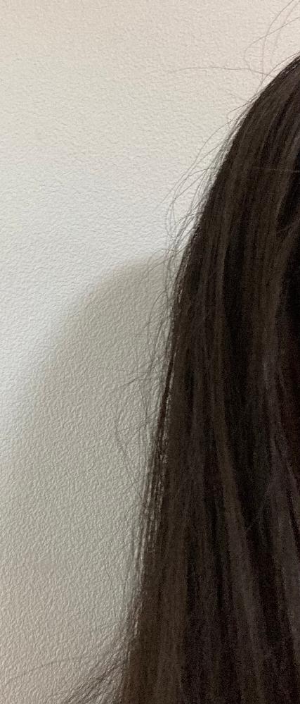 中2です。アホ毛がすごくて困ってます。 お金をかけずに改善する方法を教えてください。 毎日ドライヤーしてます。髪はおへそくらいまであります。