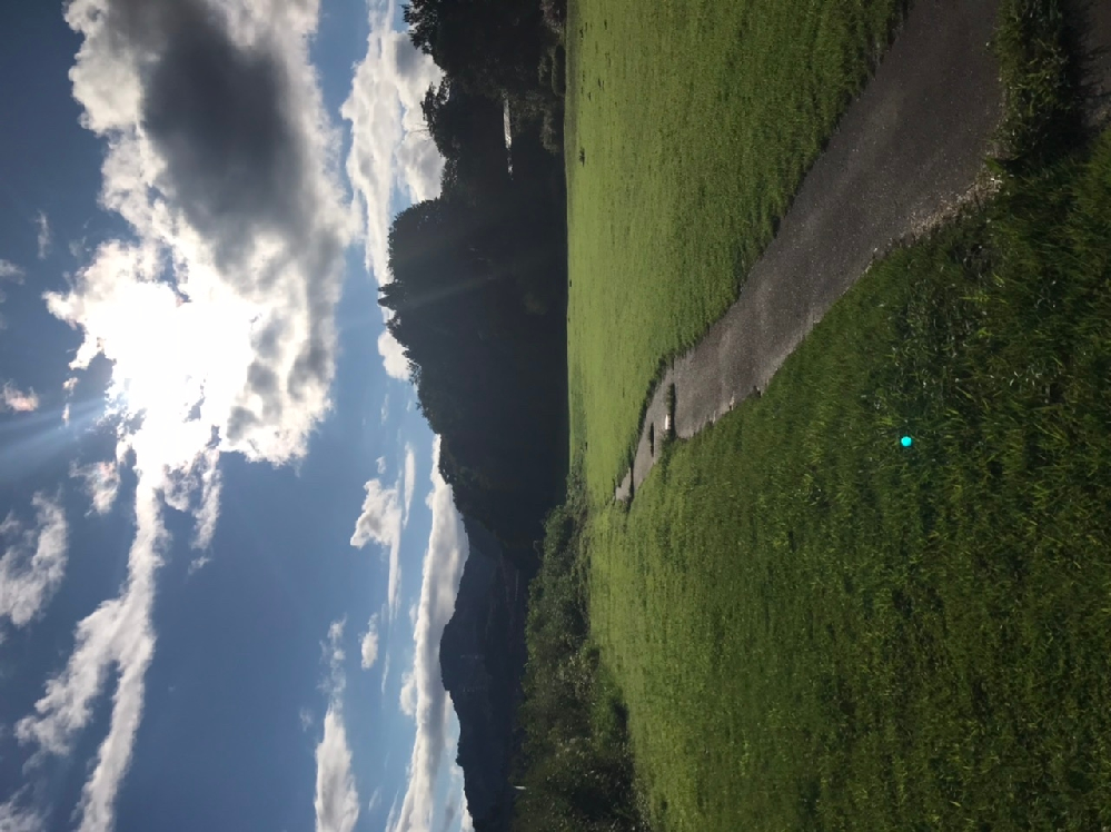 先日雨上がりに撮影した写真に緑の丸い光が 写り込んでいました。 過去の知恵袋を見るに、コレはレンズフレアという類のものでしょうか?
