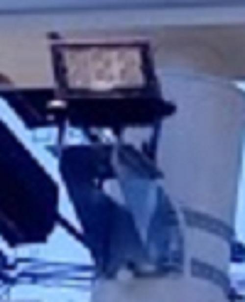 これはローソンで撮影しました。この画像であるローソンの投光器をと同じような似たようなメーカー・品番を教えてください。私は調べてみても分かりません。