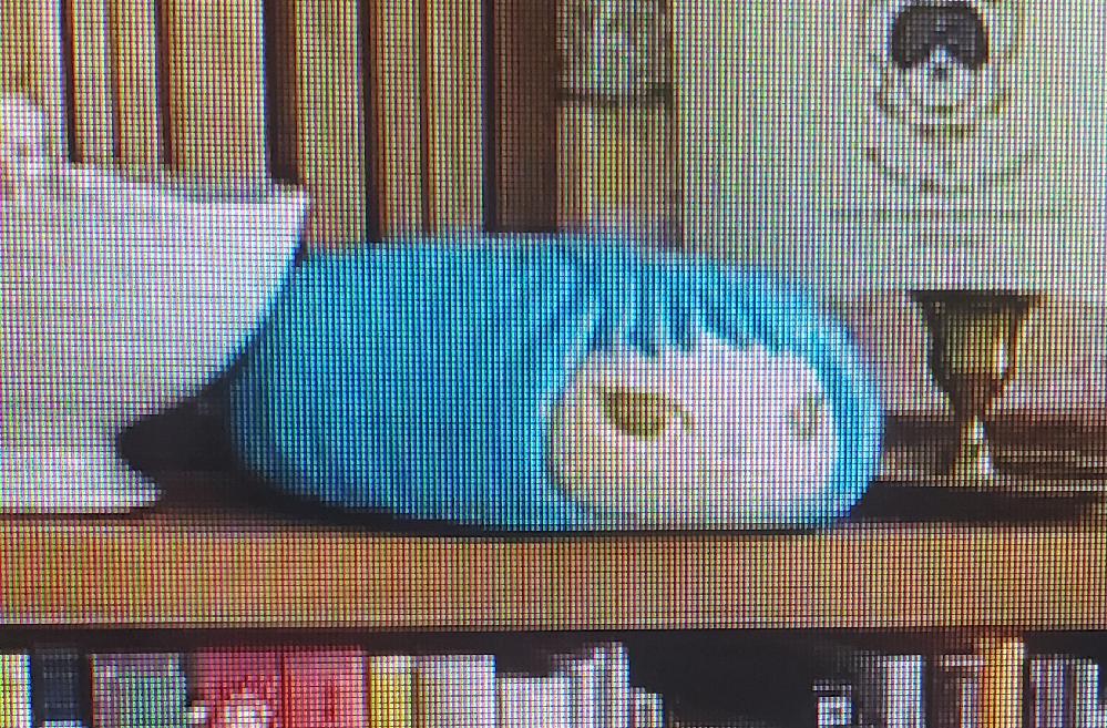 この画像の青色のぬいぐるみを探してます。 どこで買えるか知りたいので分かる方よろしくお願いします