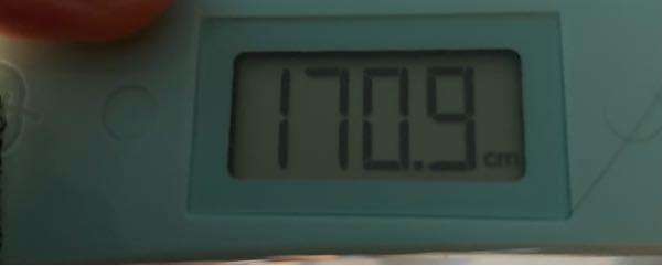 アメリカは人種の坩堝と言いますが、アメリカでは俺はチビですか?午前中に測ってこの高さです。