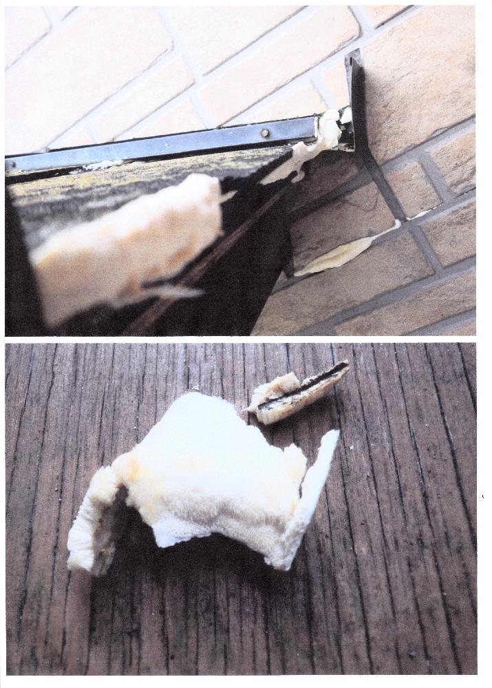 屋根の庇に付いたキノコのようなものについて教えてください。 写真のように白い(おそらく)キノコが発生しました。 昨年に発見し取り除いたのですが今年も発生しました。 知り合いの工務店に相談すると「初めて見た」とのことで、下地の損傷もないので取りあえず取り除くことになりました。 菌(胞子)が広がったようで外壁のスレート板の継ぎ目にも発生しています。 ここは、一昨年に外壁のスレートと下地の防水を取り替えたところなので、キノコが生える余地はないと思うのですが、目地に入ったホコリなどを養分にして生えているのかも知れません。 取り除いたのが下の写真のです。割ってみるとキノコのようにヒダが確認できます。 教えて頂きたいのは ・これは推測のようにキノコでしょうか ・今のところ屋根の部材に深く食い込んでいる様子もないので取り除くとして、そのあとで、薬品などで菌(胞子)を絶滅させる方法はないか ・今後、気を付けることはないか です。 よろしくお願いします。