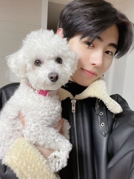 ソンフンと写っている犬はジョンウォンの犬ですか?
