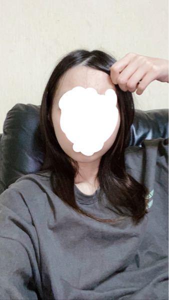 自分の顔の形なんだと思いますか?(丸顔、卵型、面長)