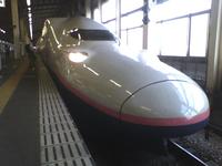 JR東日本 で 上越新幹線 の E4系 を引退させる意味はあるのでしょうか?  後、どう思いますか?  E4系 は Max の生き残りなので気になりました。 新幹線 はスピードを重視するようになったので 二階建て新幹線 は登場することはないと思います。  E4系 は 2021年10月1日 に定期運用を終了するそうですが、個人的に米が新米になる時期まで延ばして欲しいです。 秋に引...