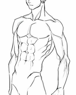 筋トレを最近始めた者です。 下の図のような腹筋はエイトパックですか?