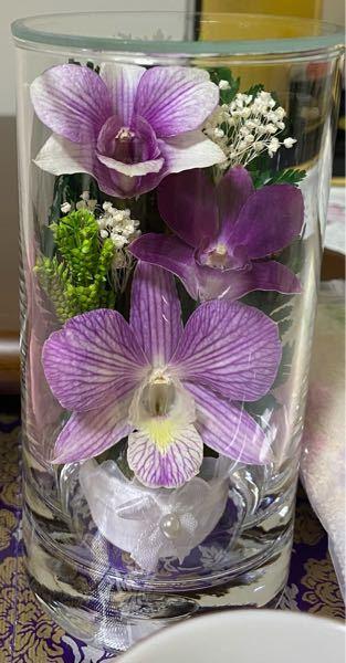 お彼岸のお花について 親戚から、お彼岸のお供えですとのことで写真のプリザーブドフラワーを一対いただいたので、今日からお仏壇にお供えしているのですが、このお花の種類はなんというお花でしょうか? お花に詳しくなくて、親戚に聞きにくいです… ご回答よろしくお願いいたします。