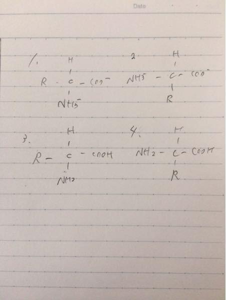 高校化学についてです。双性イオンの書き方なのですがどちらでもいいですか?イオン結合をしてるという考え方でスタサプでは、1の書き方でした。ですが問題集には2でした。 アミノ酸についてでもです。3.4.どちらでもいいですか?タンパク質分野では、N末端C末端をはっきりさせるために4の書き方でした。