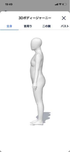この骨格はなんなのでしょうか? 服は首元が空いてる方が似合います。ハイウエストのボストムとスキニーは似合いません。 BODYGLAMというアプリで撮った写真です。前からの写真もあるので必要だったら言ってください。この写真より少し胸が大きくて太ももが張っています。
