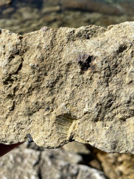 秋田県田沢湖畔にある石についてお伺いします。 写真中央下部の欠けた部分が繊維のように見えるのですが、これはどのような石でしょうか?