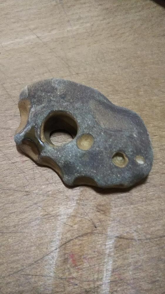 海岸で拾った石です。丸いくぼみや欠けができる石はどうやってできるのか教えてください。